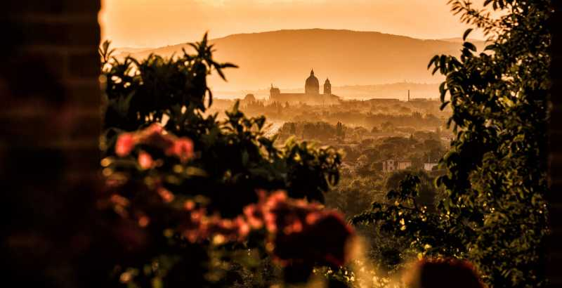 Visit in Vinery and wine tasting in Assisi