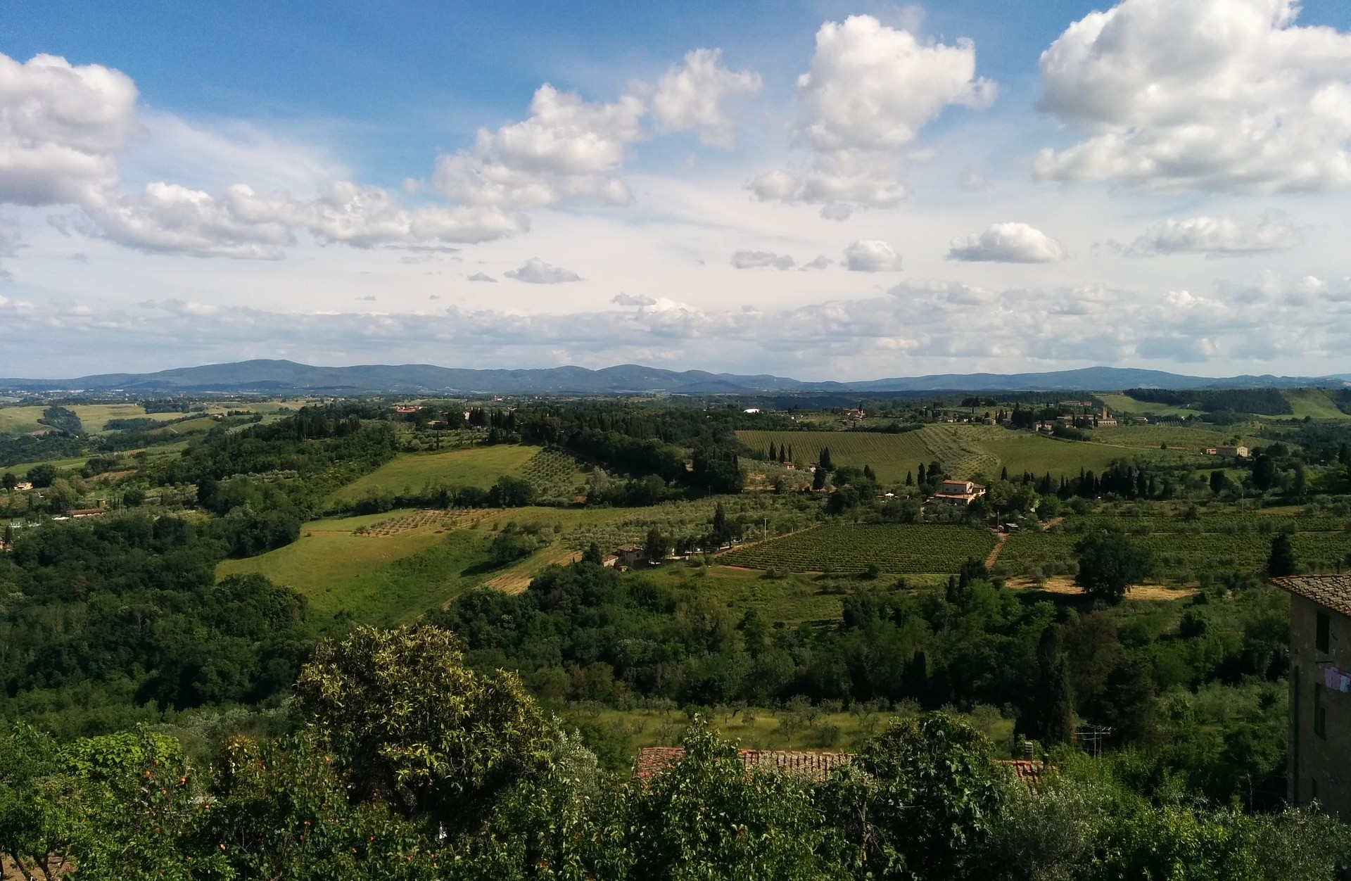 The Chianti's Way: from Firenze to Siena