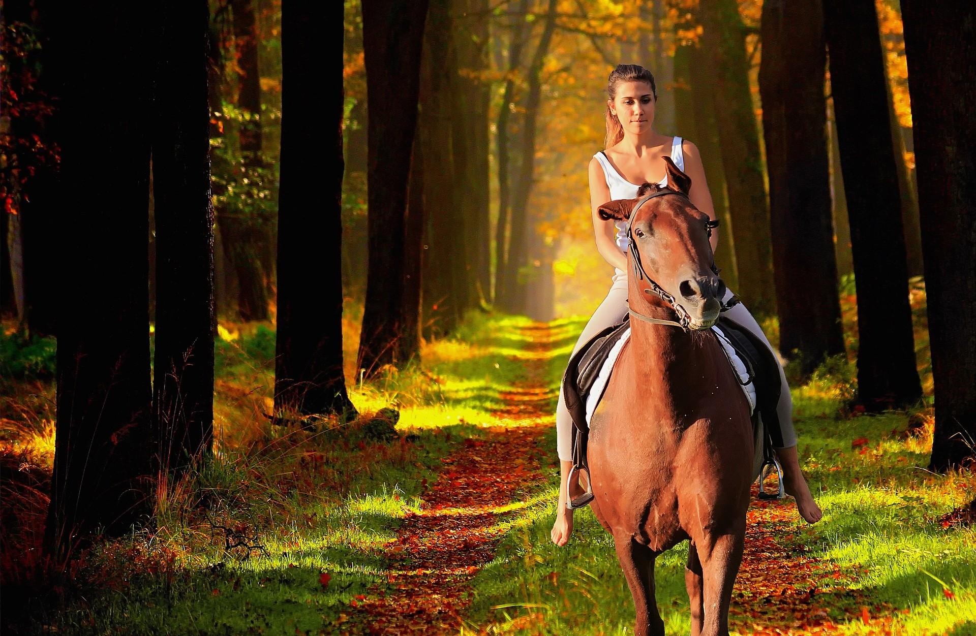 Horse riding in Valnerina