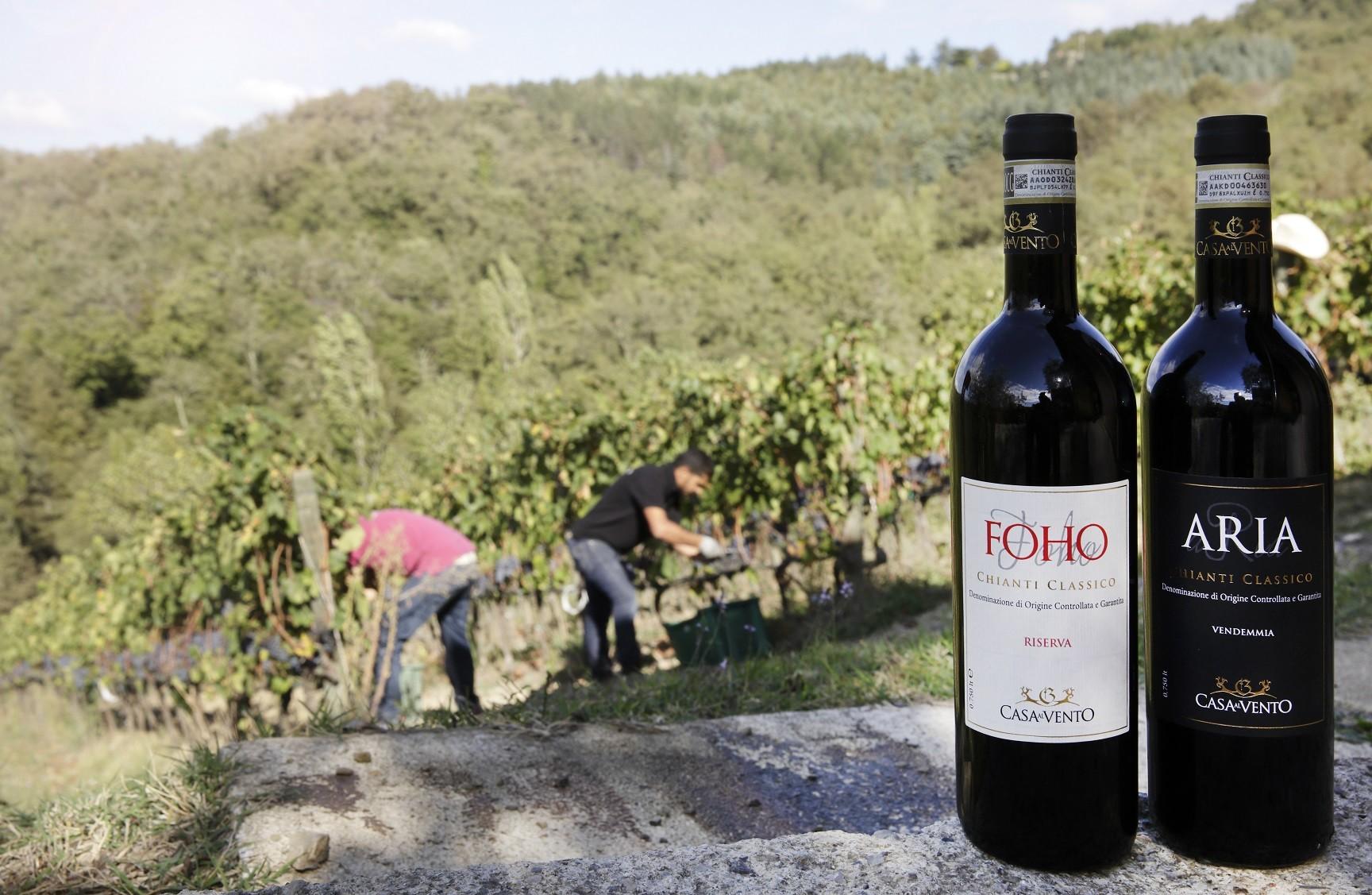 Degustazione di vini in Toscana nell'area del Chianti