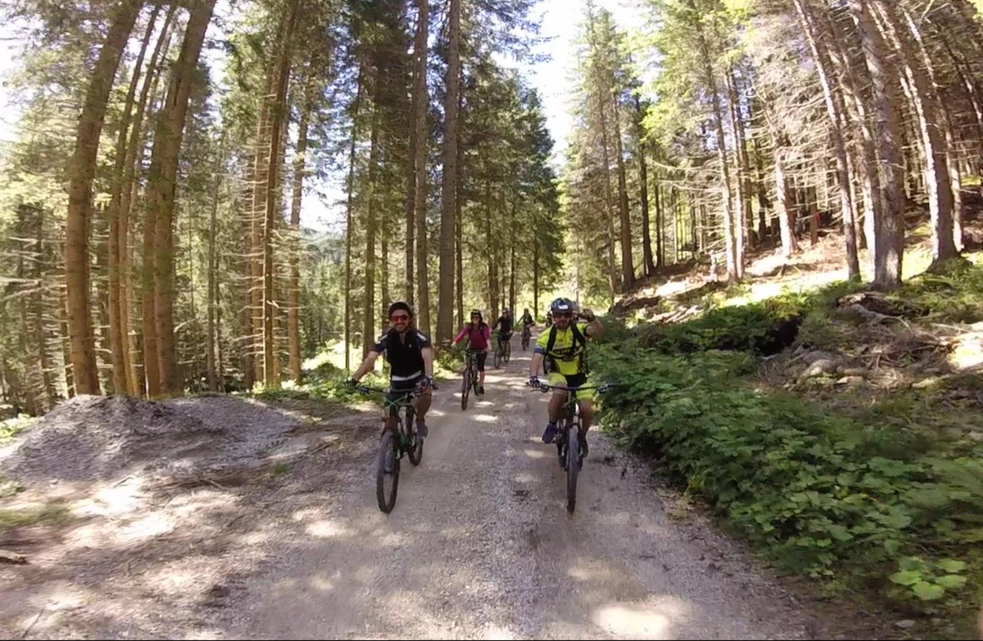 Mountain Bike BackCountry