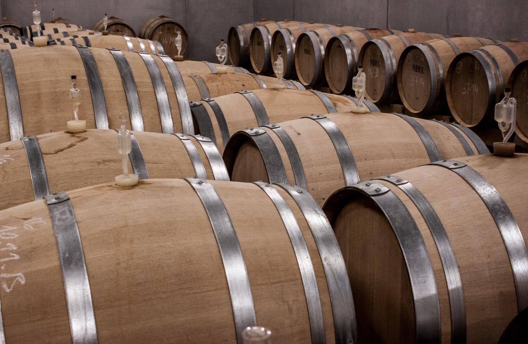 Tour & Tasting: i vini di Torgiano
