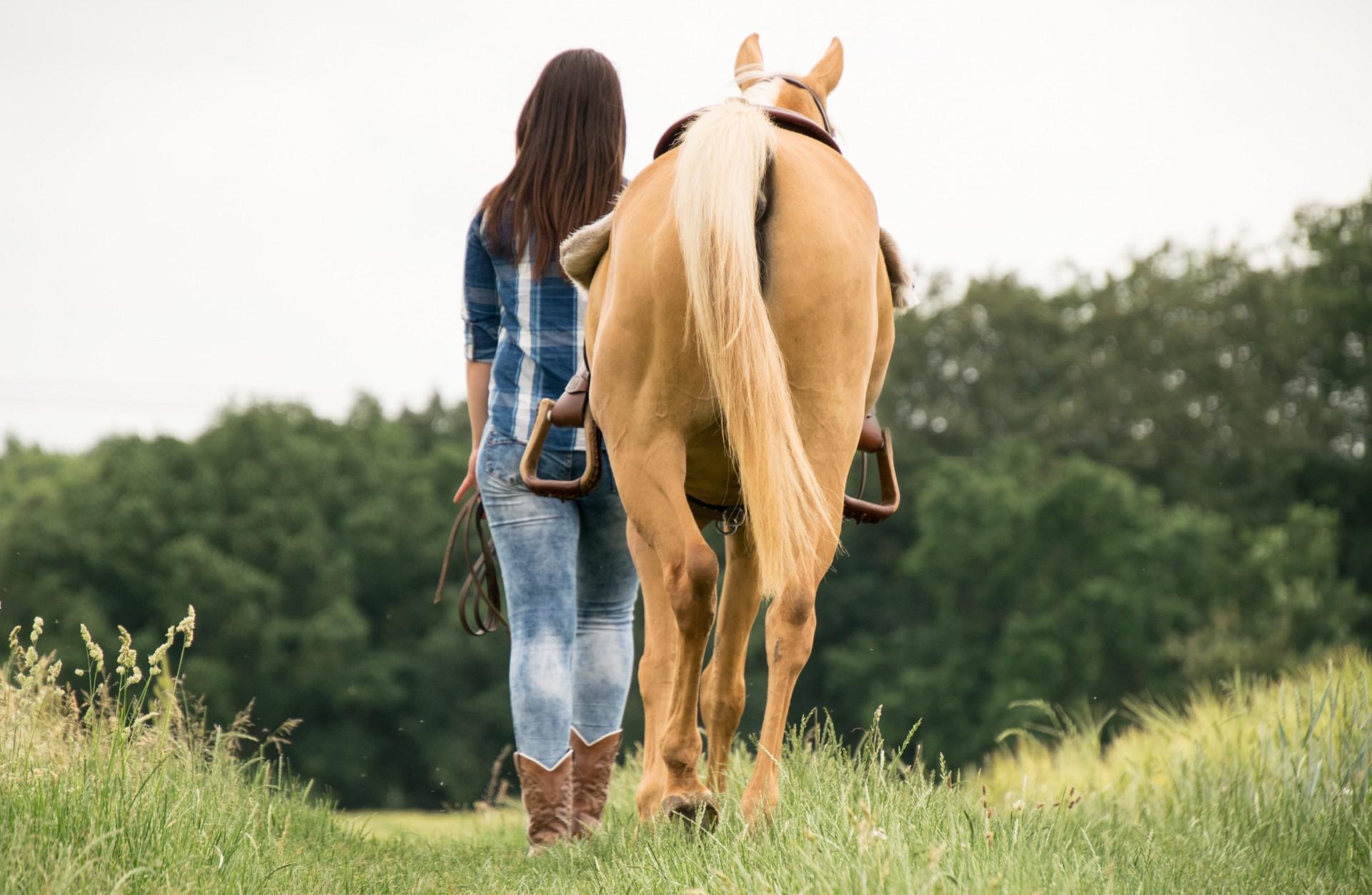 A cavallo con gusto sulle colline di Todi