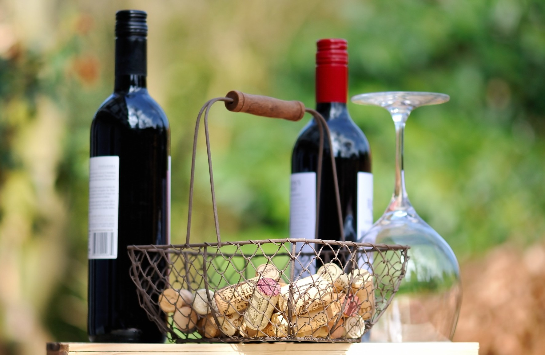 Discovering Umbria wines in Orvieto