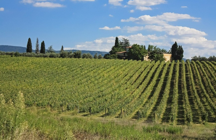 Discovering the Crete Senesi: adventure and good truffles