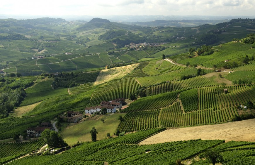 The precious taste of the Langhe
