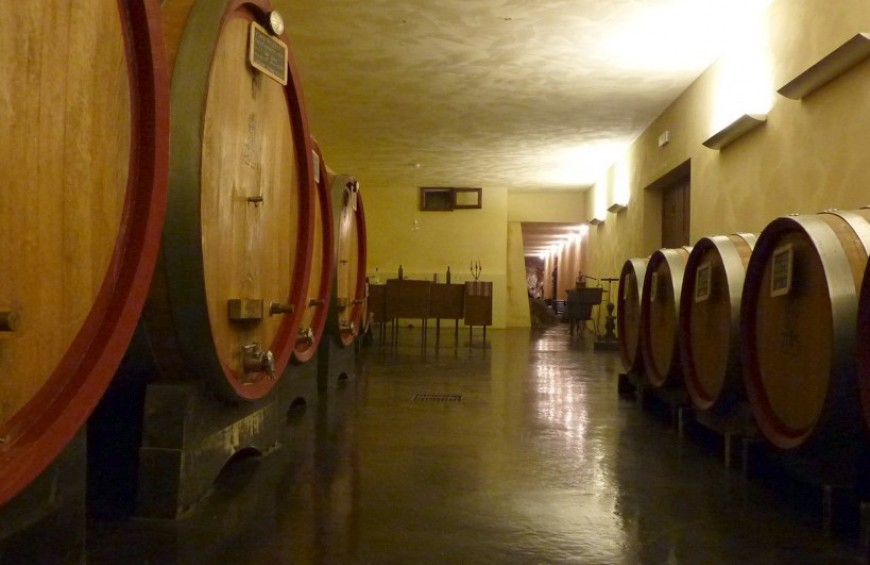Discovering DOC wines of Amerino hills